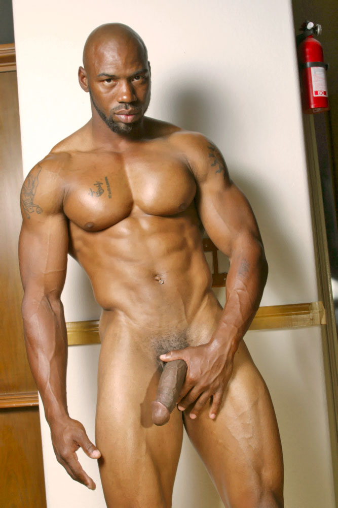 Big Black Cock Male