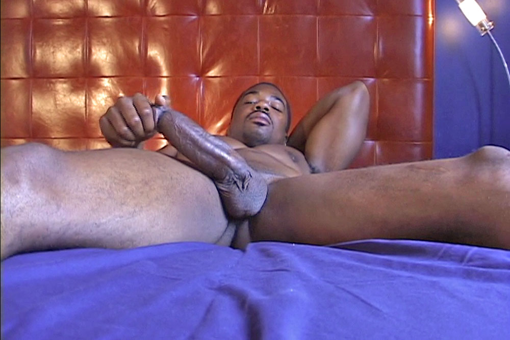 Thick black cock sex